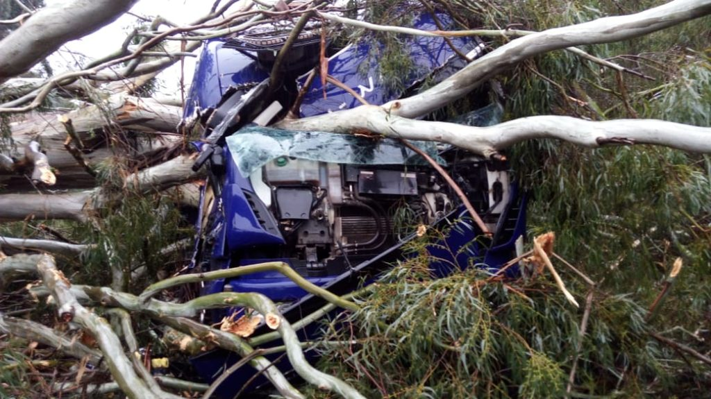 Árvore atinge caminhão durante ciclone bomba em SC