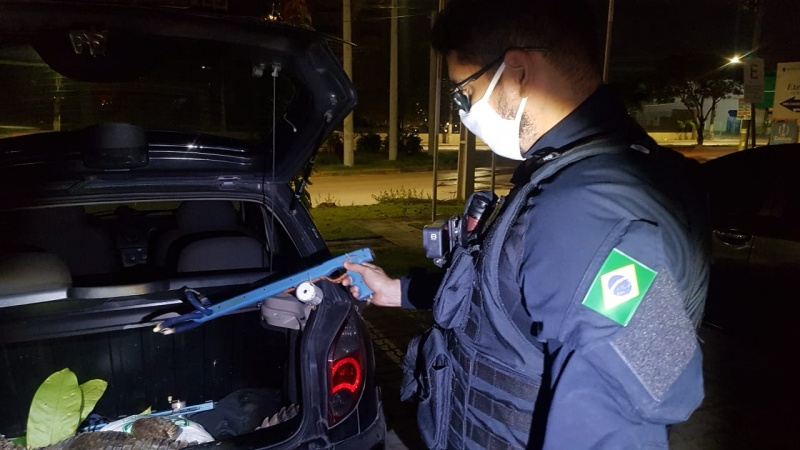 PRF flagra jacaré sendo transportado em porta-malas de veículo na BR 174